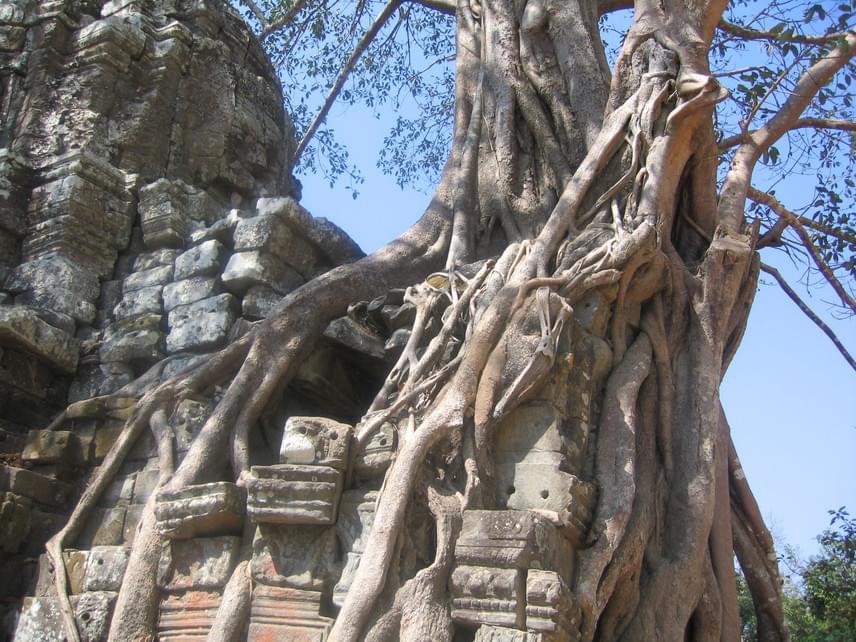 A templomok ősi városát a növényzet romboló ereje miatt kezdték restaurálni, de a munkálatokat a Vörös Khmer véres uralma alatt felfüggesztették, és csak azután kezdték újra, hogy Pol Pot, a kommunista diktátor hatalmát a vietnami erők megdöntötték. A tudósok ekkor még nem sejtették, hogy Angkornál is nagyobb felfedezésre bukkanhatnak a jövőben.