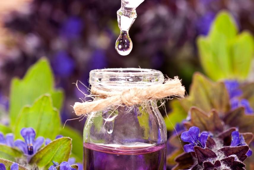 Ugyanez működhet a kellemesebb illatokkal is, egy kevés levendulás illóolaj ugyanígy vattapamacsra téve, majd az ablakkeretre kenve a hangyák és a szúnyogok mellett a legyeket is távol tartja. Még több rovarriasztó praktikáért kattints ide!