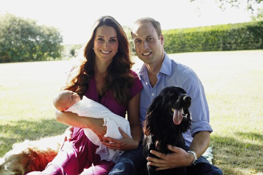 Mióta megszületett György és Charlotte, a család kutyusa, Lupo kicsit elhanyagolva érezte magát, így minden bizonnyal nagyon örül majd a jövevénynek.