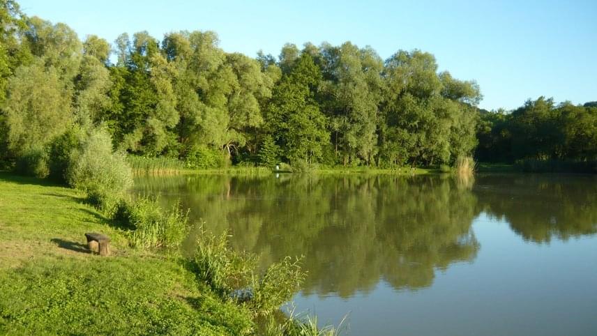 Az Orfűi-tavak rendszerét négy tó alkotja, az Orfűi- vagy Kis-tó, a Pécsi-tó, a Herman Ottó-tó és a Kovácsszénájai-tó. Eredetileg az árvízvédelem miatt hozták létre mesterséges víztározóként, de a strandolni vágyók hamar felismerték a víz nyújtotta lehetőségeket. A kiépített Kistó Strandra az egész napos felnőtt belépő 900 forint, de számos szabadstrand is van.