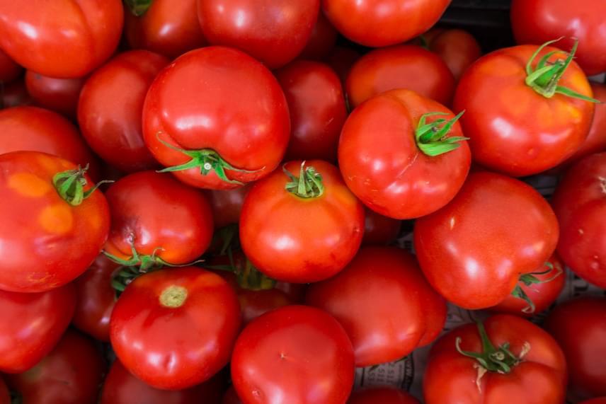 Bizonyos ételeket a hűtőbe sem célszerű betenni, ilyen például a paradicsom, mely nyáron a hazai termésnek köszönhetően sokkal ízletesebb, mint a télen kapható változatok. A paradicsom ugyanakkor nem feltétlenül igényel hűtést, sőt, a hűtőben megváltozik a szerkezete, és nagyobb eséllyel lesz vízízű. Kattints ide, ha tudni szeretnéd, még mit ne hűts le!