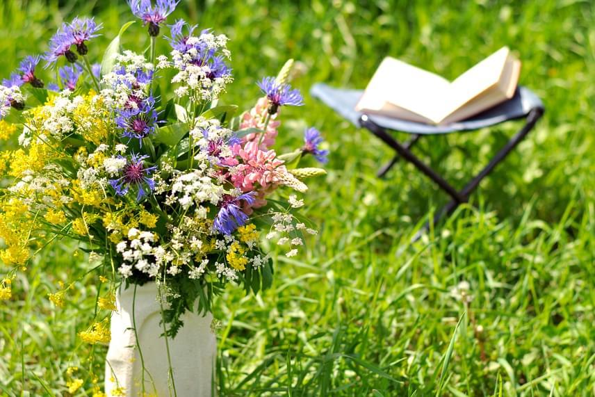 Ha virágot szedsz a kertből, vagy éppen a teraszon található asztalt díszítenéd egy csokorral, érdemes a váza vizébe két kanál ecetet, illetve egy kanál cukrot tenned, így jóval tovább marad majd szép a vágott virág. További tippeket is megismerhetsz, ha a cikkünk alapjául szolgáló forrást is végigböngészed, kattints ide!