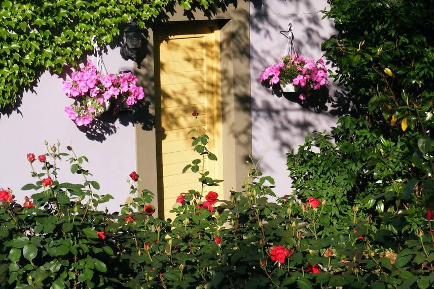 Rózsaimádatáról vált híressé Gül Baba is, aki a török sereg derviseként érkezett Buda ostroma idején. A muszlim szerzetes életéről és haláláról számos legenda szól, az ő keze munkáját vélik felfedezni a Rózsadombon is. Halála után Szulejmán a domb aljában egy rózsakertben állíttatott neki sírkápolnát. Gül Baba türbéje Európa legészakibb iszlám zarándokhelye, a környező utcák pedig májustól virágba borulnak.