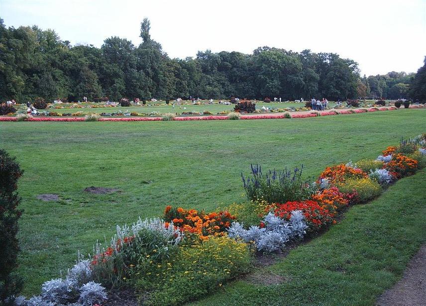 Nem kell messzire utaznod akkor sem, ha a fővárosban keresel pihenőhelyet, hiszen Budapest belvárosában is megcsodálhatod a színpompás virágzást. A Margit-szigeten lévő japánkerttől néhány percre, a sziget szívében gondosan kialakított, virágzó kert padjai is segítenek egy kicsit kiszakadni a nagyvárosi nyüzsgésből.