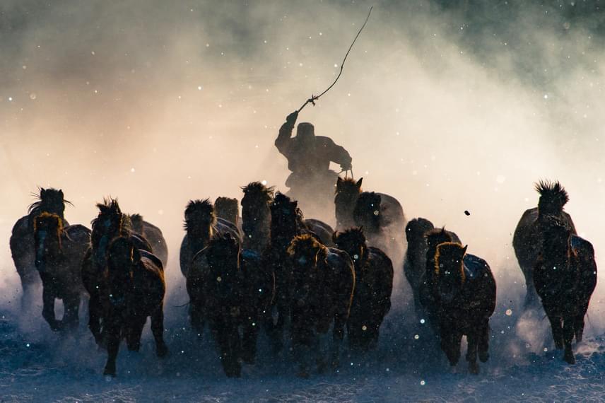 Nagydíj: Anthony Lau - Téli lovas.