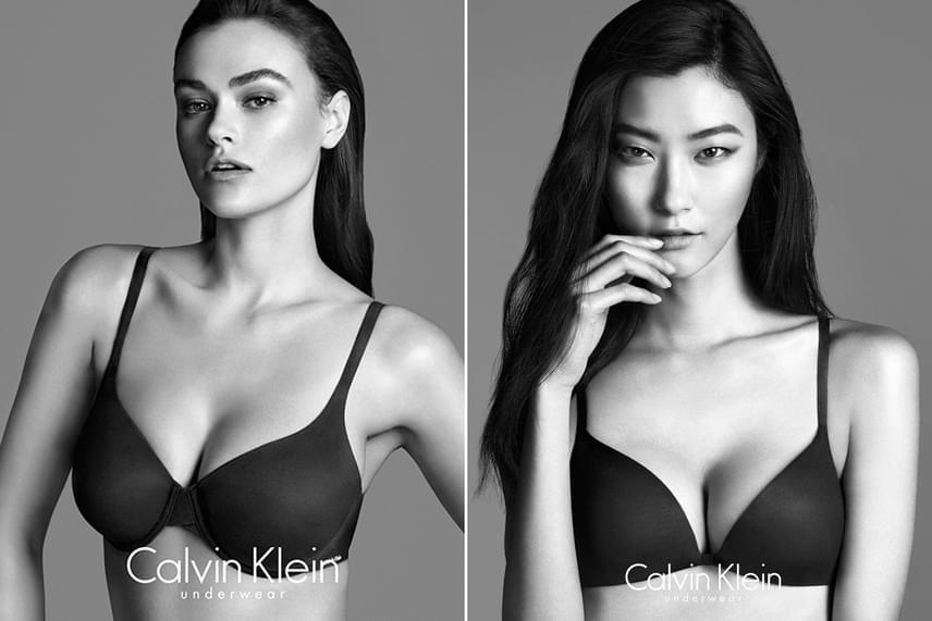 Jobb oldalon Myla Dalbesio látható, míg balra a megszokott, vékony modellek közé tartozó Ji Hye Park fotója van. Mindketten a Perfectly Fit kampány során álltak a fényképező elé, melyben Myla volt ez egyetlen teltebb modell, akin ugyan nincs felesleg, de mellben és fenékben csaknem kitölti a plus size modellek fehérneműit.
