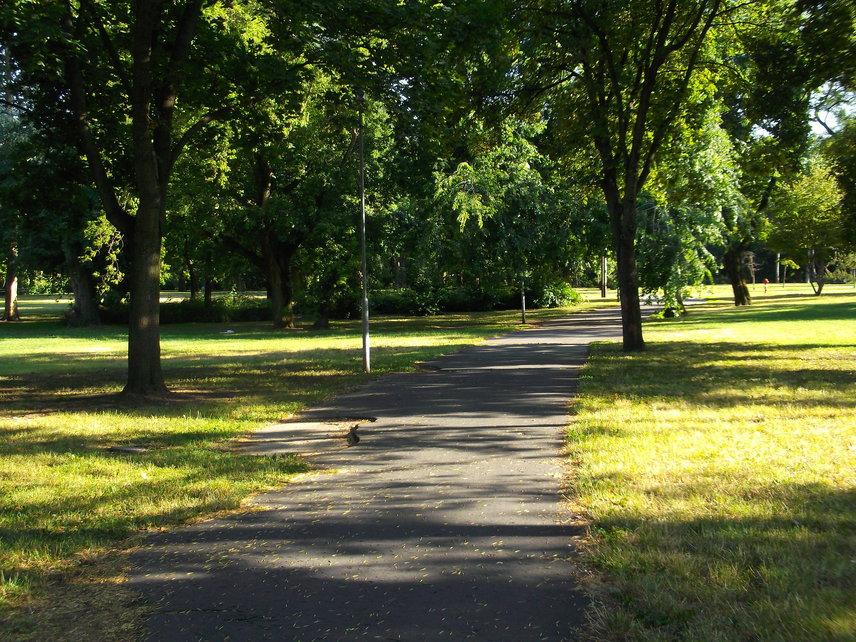 Csend és levegőEz az a tényező, ami a tervekből a legkevésbé olvasható ki. A sétányok némelyike megszűnik vagy új funkciót kap, az autósok az ígéretek szerint a park külső kerületében kapnak lehetőséget a parkolásra, ezért joggal feltételezhető a jövőben is a csend és a tisztaság.