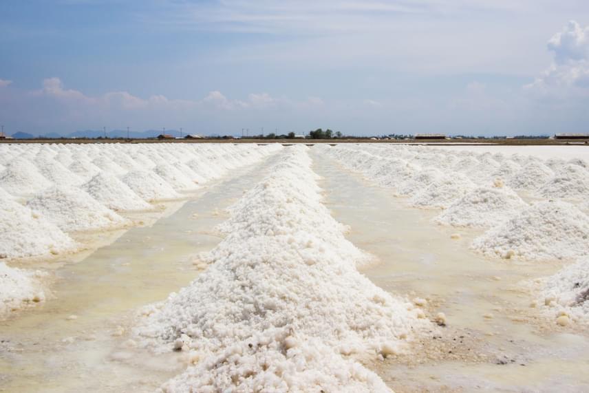 A tengeri sót a tengerek, óceánok vizéből nyerik párologtatással. A tengeri só igen sok ásványi anyagot tartalmaz - többek között jódot, cinket, kalciumot, mangánt és vasat -, ugyanakkor fontos tudni, hogy a tengerek szennyezettsége miatt igen kevés olyan sólepárló hely található, amely igazán minőségi sót tud manapság előállítani. A legjobb minőségű és ezáltal a legdrágább típusok közé tartozik például a piramis alakú sókristályokból álló Maldon-só, a hawaii Alae-só vagy éppen a franciaországi Fleur de sel, vagyis a só virága.