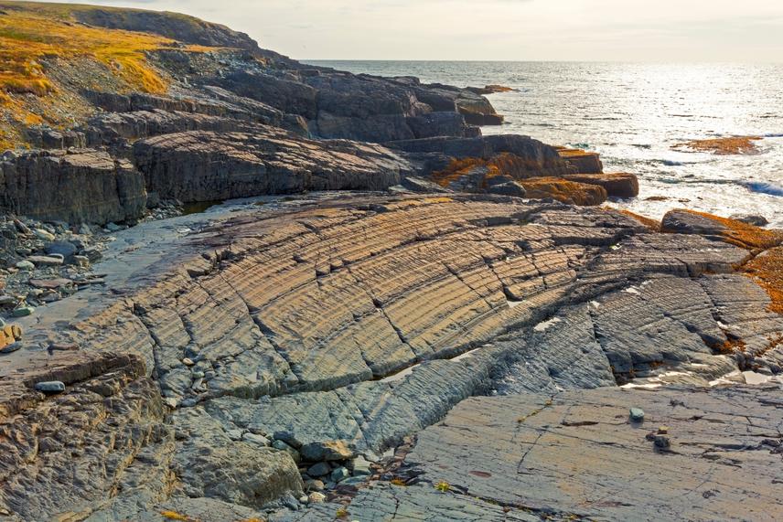 A kelet-kanadai Új-Fundland szigetén található földünk egyik legjelentősebb fosszília-lelőhelye, a Mistaken Point nevű földnyelv, amely egy 17 kilométeres sziklás partszakaszt jelent. Ebből öt kilométer egy ökológiai rezervátum része is, sziklái 580-560 millió évre eredeztethetőek vissza, prekambriumi fosszíliák legszerteágazóbb gyűjteményét találták itt meg, a legrégebbi edicariumi fosszíliákkal.