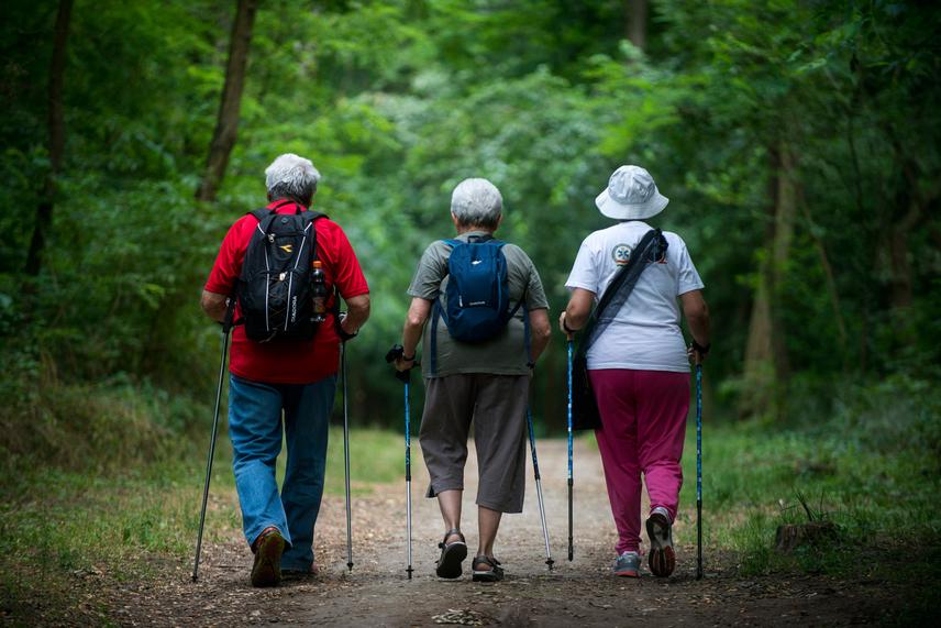 A szív jelzéssel ellátott útvonalak, melyek az erdők gyógyító hatására általánosságban is fel kívánják hívni a figyelmet, 2,4, és 4,2 kilométer hosszúak.