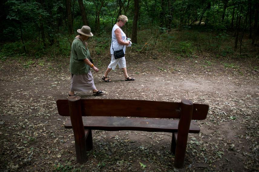 A túraösvényen elinduló látogatók hosszabb és rövidebb távokat is megtehetnek állapotuktól függően, de pihenőhelyek is segítik azokat, akik hamarabb elfáradnak.