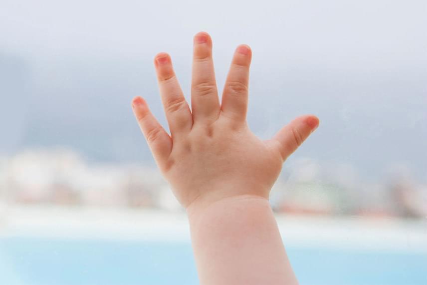 A rövid mutatóujj annak a jele, hogy gyermeked szerencsés típus: a jég hátán is megél, és sok-sok mindenben lehet egyszerre tehetséges, így mindig lesz mihez fognia, ha újra kell kezdenie.