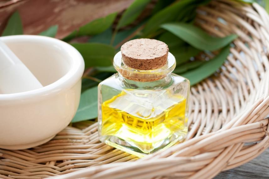 Szintén nagyon hatásos az eukaliptusz, amely szintén elérhető füstölő, illetve illóolaj formájában is.