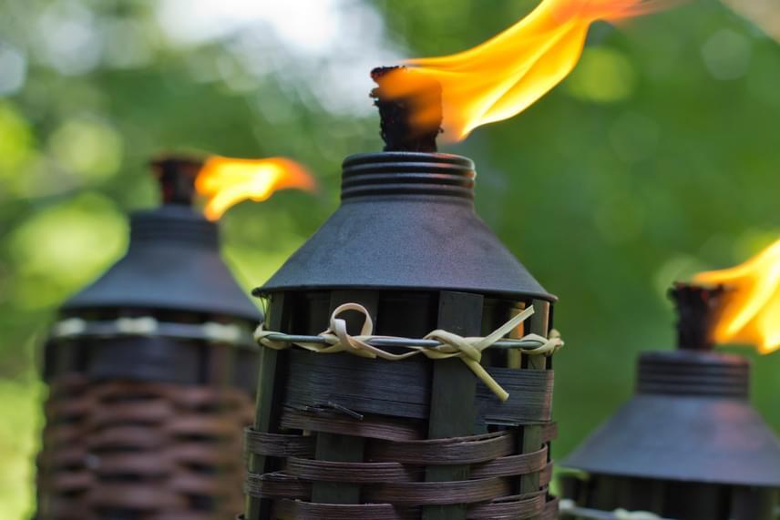 A szúnyogok ellen kültéren kiváló módszert jelentenek a szúnyogriasztó fáklyák, nem véletlen, hogy az egyik leggyakrabban árusított típus az úgynevezett citronellás, a citrusos illatokat ugyanis ki nem állhatják a kis rovarok.