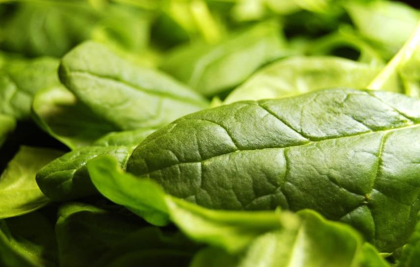 A spenót, a rukkola, a kelkáposzta, a mángold és általában a zöld leveles zöldségek nemcsak értékes vitaminokkal és ásványi anyagokkal támogatják a szervezetet, de jótékony energiájukkal is szolgálják annak egészségét. Ezt a jótékony energiát a napsütésből nyerik, amelyet magukba szívnak, és amelyből táplálkoznak a fotoszintézis által.