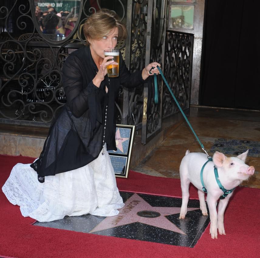 A két Oscar-díjas angol színésznő, Emma Thompson egy pórázon vezetett malaccal és egy korsó hideg sörrel a kezében tette tiszteletét a hollywoodi Hírességek sétányán, amikor végre megkapta saját csillagát.