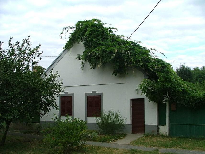 Mérges A község Győr-Moson-Sopron megyében, a Rába völgyében fekszik. A település már a honfoglalás előtt lakott volt, mai nevét viszont csak a 15. században kapta. Akkor lett a község ura Mérges Miklós, aki várat is építtetett. A képen a település egyik jellegzetes háza látható.
