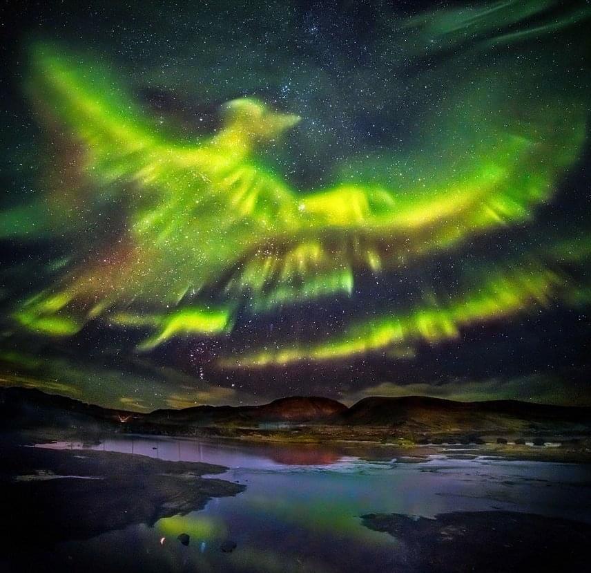 Hallgrimur P. Helgason egyik fotóján látható, hogy az északi fény zöldellő nyalábjaiból egy főnixmadár rajzolódott ki. A mitológiában a főnixmadár a halhatatlanság madara.