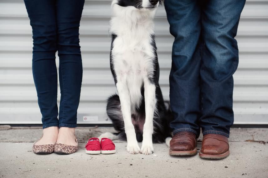 A gazdik, a kutyus és egy pár kiscipő. Vajon kié lehet?