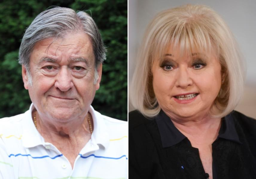 Koós János és Dékány Sarolta 45 éve él boldog házasságban. A színész első feleségét, míg az énekesnő vőlegényét hagyta el, hogy egymáséi lehessenek. Az idő őket igazolta, hiszen alig van olyan hazai sztárpár, akik ennyi ideje együtt vannak, mint ők.