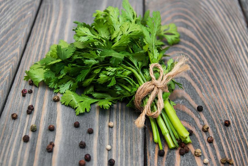A petrezselyem erőteljes vízhajtó, melyet a leveleiben található káliumnak köszönhet, ám emellett sok-sok A-vitamint és folsavat is tartalmaz. Szórd az ételekre, tedd a turmixok részévé, vagy főzz teát petrezselyemlevélből, és nem marad el a látványos hatás!