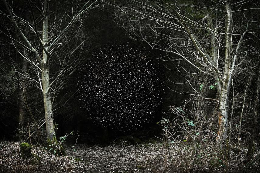 Ellie Daviesnek kivételesen jó szeme van a természet olyan részeire, amelyeknél szebbet mesterségesen sem lehetne alkotni.