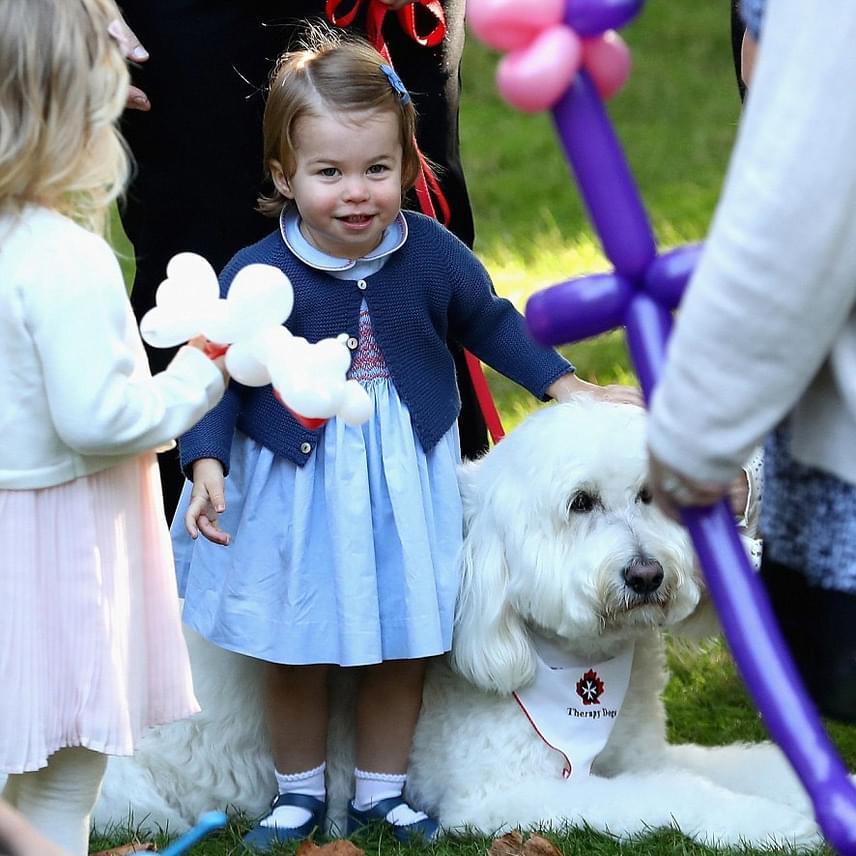 Az már korábban is kiderült, hogy a kis hercegnő él-hal a kutyusokért, így aztán nem csoda, hogy a zsúron is egyből ehhez a kis szőröshöz szaladt oda.