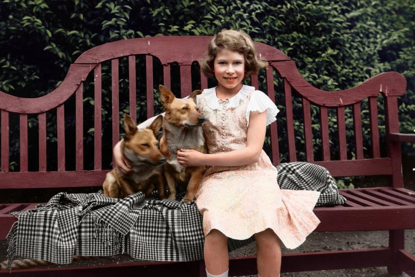 Úgy tartják, a hosszú élet egyik titkát az jelenti, ha valaki háziállatokkal is megosztja életét, ami Erzsébetnek már gyermekkorában is igen kedves volt. Máig imádja a kutyákat, különösképp a corgikat.