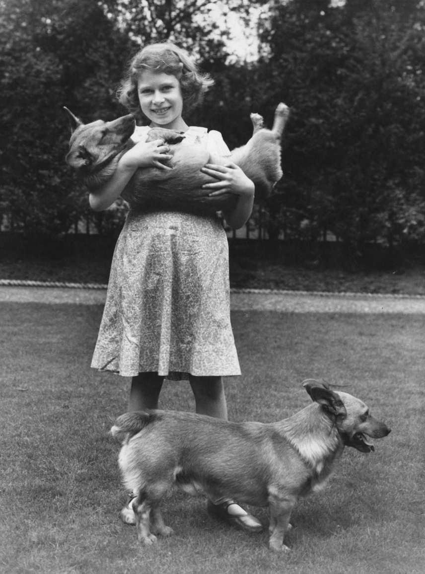 Elizabeth Alexandra Mary Windsor corgijaival valamikor a harmincas évek második felében. A kislány Erzsébetet kezdettől fogva elbűvölték ezek a kis szőrös négylábúak.