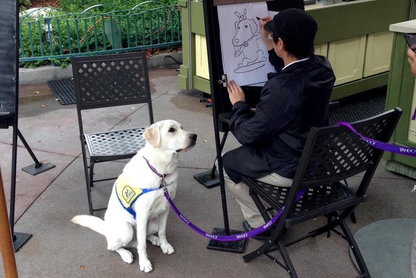 Egy Disneylandben sétálgató házaspár szúrta ki az imádnivaló, modellt ülő kutyust, és továbbküldték a róla készült képeket a 26 éves lányuknak, aki rögtön megosztotta azokat a Twitteren.