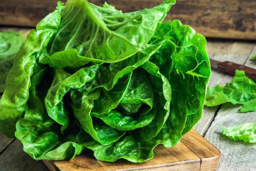 Az olyan zöld leveles zöldségekkel is érdemes vigyázni, mint a messziről ideszállított saláta vagy fodros kel. Mindig tanulmányozd át alaposan az élelmiszerekhez tartozó tájékoztató feliratokat, és a lehető legegészségesebbet válaszd, melyet a lehető legkevesebb vegyszerrel kezeltek.