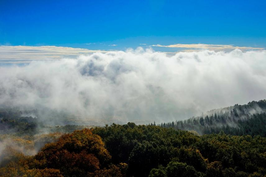 Sűrű köd telepedett az erdők fölé Salgótarján közelében.