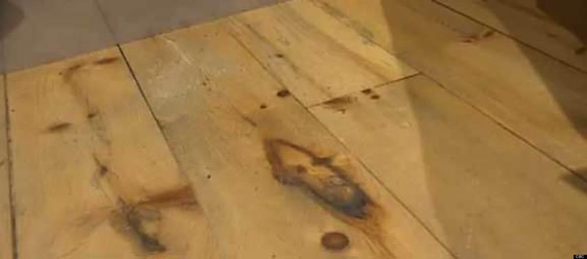 Bár furcsán hathat a helyszín, állítólag egy halifaxi szépségszalonban is tapasztaltak Jézus-jelenést. Az egyik asztal alatt, a helyiség fapadlóján fedezték fel a Jézus arcára emlékeztető alakzatot.