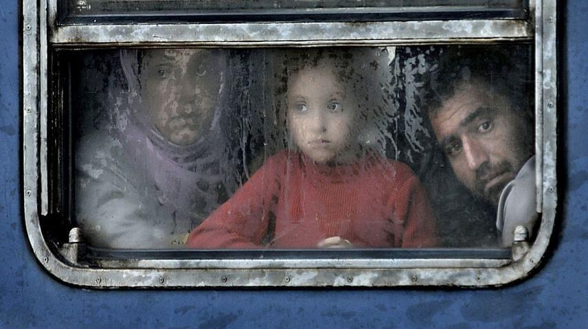 A Történet kategóriában került a legjobbak közé Kerekes István Tranzitzóna című fotósorozata, amelyet az osztrák-magyar határon készített a várakozó menekültekről.