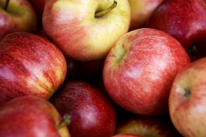 Bár az alma megfelelő körülmények között egyébként is sokáig tárolható, még tovább eltartható, ha főzetet készítesz száraz hagymaszeletekből, majd azzal permetezed le. Persze ezt csak akkor tedd meg, ha nem szeretnéd egy-két héten belül felhasználni, ez idő alatt ugyanis némiképp még érezhető a hagymaíz.