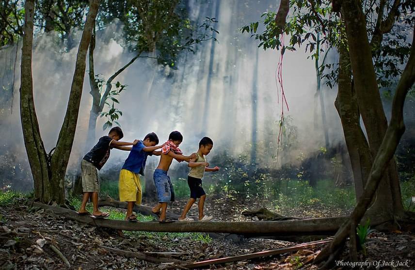 Az erdő az ő kalandparkjuk, és imádják. (USA)                         Fotó: Hendrik Priyanto
