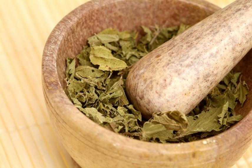 A csalán talán a legolcsóbb gyógynövény, ám annál hatékonyabb segítség az vírusos megbetegedések leküzdésében - gyulladáscsökkentő, tisztító és erősítő tulajdonságai révén. Igazi jolly joker tehát, és éppen olyan egyszerűen készíthetsz belőle teát, mint a már említett gyógynövényekből, a még biztosabb hatás érdekében pedig a csalán felét kiválthatod a szintén gyulladáscsökkentő kamillával vagy borsmentával.