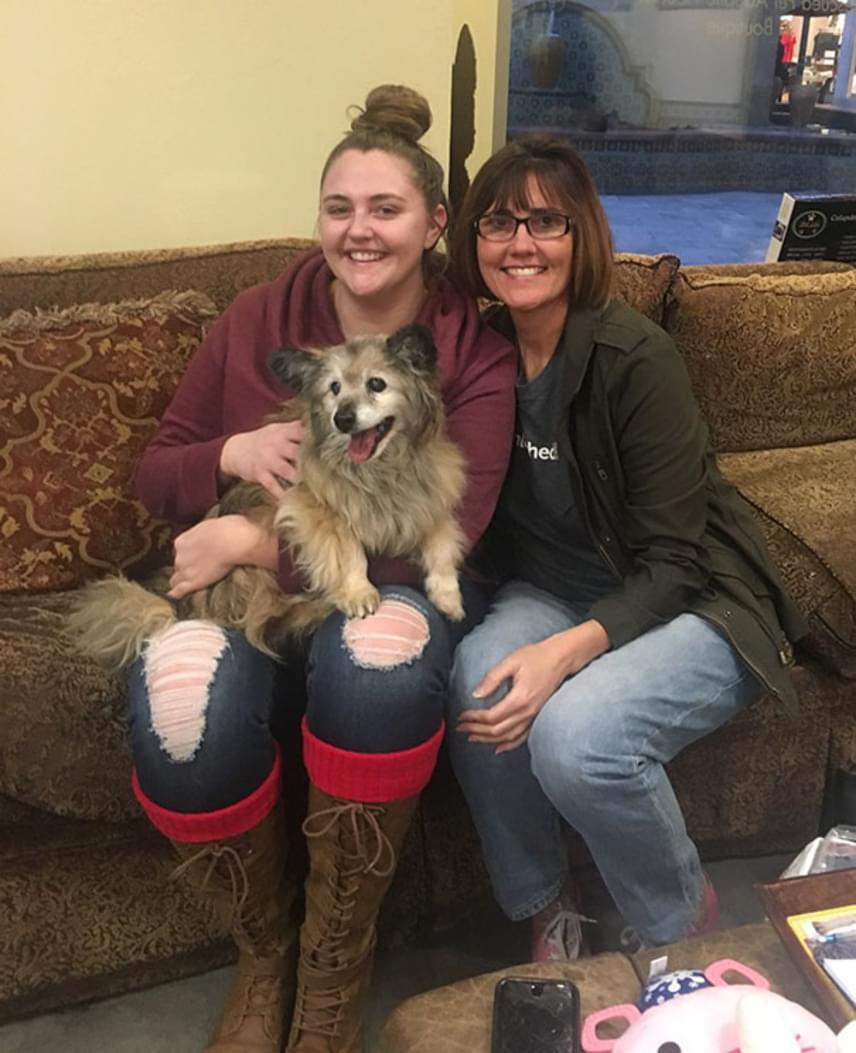 A nő az egyik legnagyobb állatmentő szervezethez, a Paw Workshöz vitte el Jaripót, majd a család örökbe fogadta őt. A kutyus nekik köszönhetően igazi boldogságban töltheti el öregkorát.