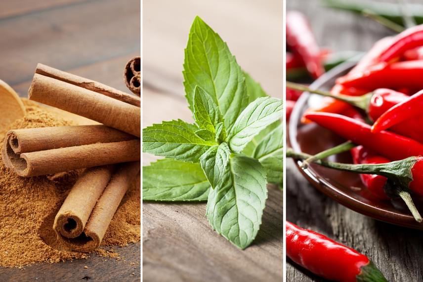 A fűszerek között is akad olyan, ami csökkenti az éhséget. Jó példa erre a fahéj, melyből finom teát készíthetsz. Ugyancsak érdemes az ételeket csípős ízekkel fűszerezni, hiszen ez is segít a zsírégetésben, míg a menta aromája az egyik legerősebb étvágycsökkentő íz, így a rágógumi, az étkezések utáni fogmosás vagy a mentás fűszerezés is nagyon erősen ajánlott.