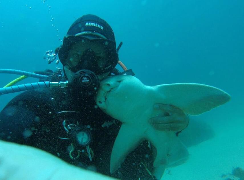 Bár nekünk vérfagyasztó a gondolat, Rick számára édesek a pillanatok, amikor kedvenc cápájával lehet.