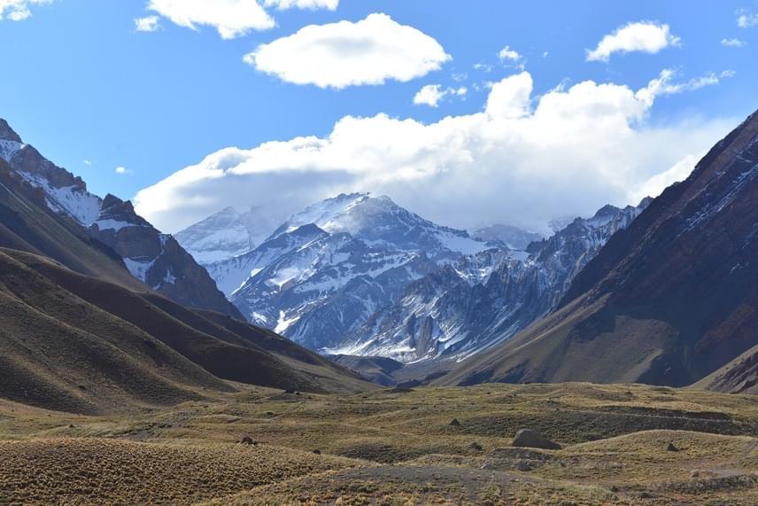 A felfedezést megelőzően úgy tartották, az őszöldségek kialakulása körülbelül az Andokkal egyidős lehet, a számítások azonban ezt megcáfolták. A kutatók szerint szerint a maradványok kora megközelítőleg 52 millió év lehet, és már a Gondwanán is teremhetett.