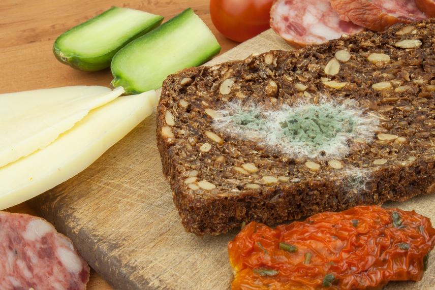 A kenyér, főleg a teljes kiőrlésű és magvakkal ellátott fajta, különösen érzékeny a penészgombára. Ez a belesütött olajos magvaktól jóval nagyobb nedvességtartalommal rendelkezik, mint a sima fehér lisztből sütött verzió. A péksütemények állaga szivacsos és lyukacsos, ezért a mélyebb rétegekben is könnyen behálózzák a mikroszkopikus méretű gombák. A kenyeret akkor sem szabad megenni ilyenkor, ha csak egy kisebb folt van a héján.