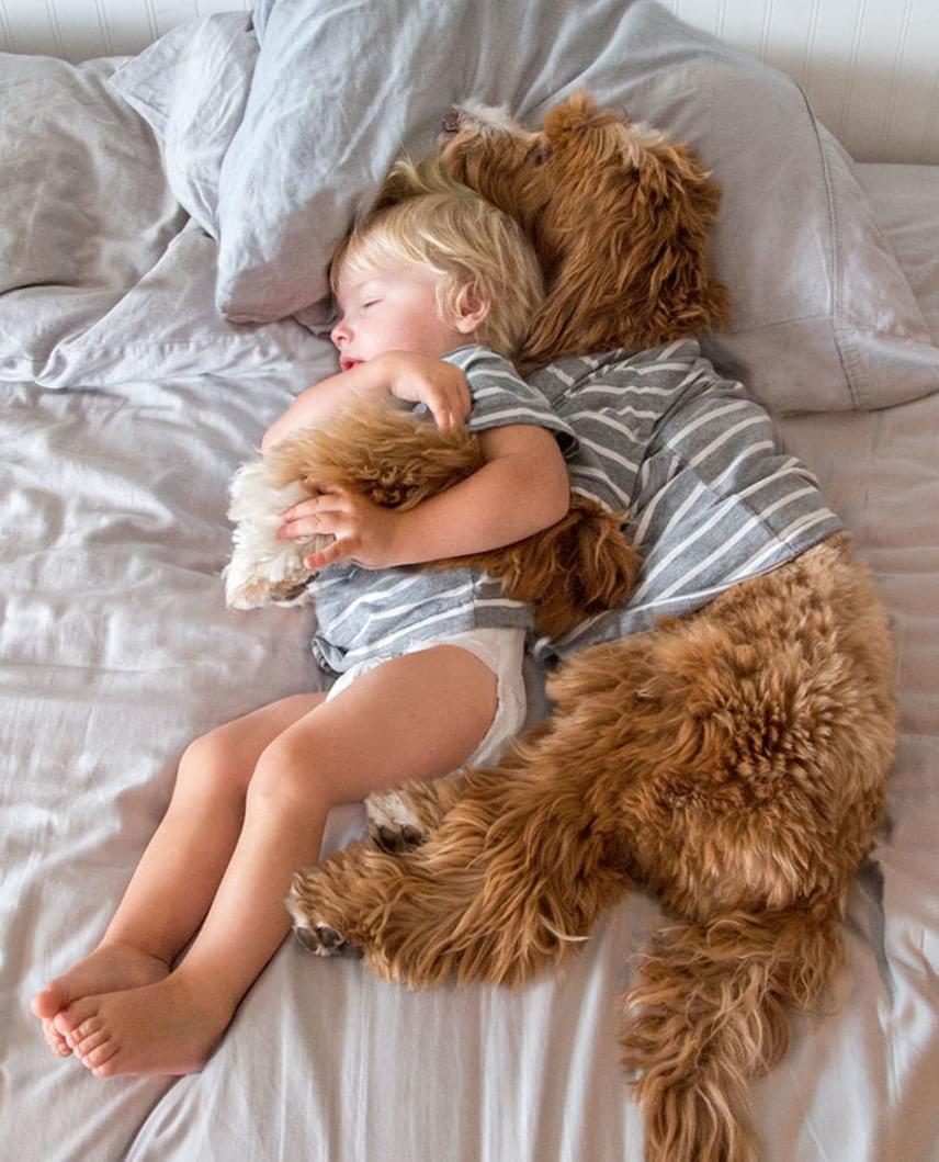 Buddy és Reagan elválaszthatatlanok egymástól. Az őket befogadó család szerint a legjobb ötlet volt a kutyus beszerzése, mert a szeretettel teli állat óriási segítséget nyújt az örökbe fogadott gyerekek integrálódásában.