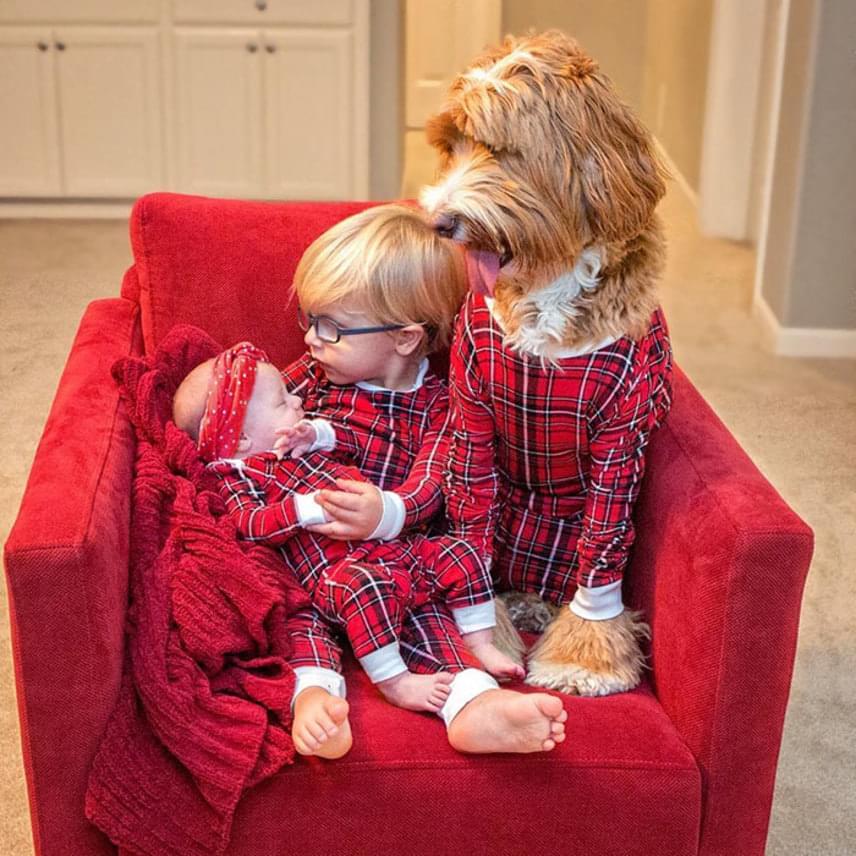 A Buddyt örökbeadó szervezet minden évben jótékonysági naptárt készít, melynek állandó szereplője a kisfiú és a barátságos eb. Ezzel mindketten segítik az adaptációs szervezet munkáját.