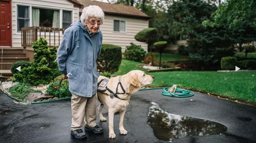 Annabelle Weiss fiatalkorában a tengerészgyalogságnál szolgált egészen 1946-ig, amikor nővérként kezdett dolgozni. Ezt követően pajzsmirigyrákot diagnosztizáltak nála, ami ellen ugyan megnyerte a csatát, később mégis lassan lemondott életéről. 2013-ban viszont megtörtént a nem várt csoda: találkozott Joe-val, a labradorral.