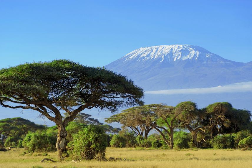 A Kilimandzsáró Tanzánia legmagasabb hegycsúcsa. A tetején látható jégsapka adja meg a hegy egyedi és jellegzetes látványát, és ez az, ami nem garantált már a jövő nemzedékének. A kutatások és mérések eredményei szerint szomorú becsléssel álltak elő a tudósok. A Kilimandzsáró hósipkája évtizedek óta zsugorodik, és a prognózis szerint 2020 körül végleg eltűnik.