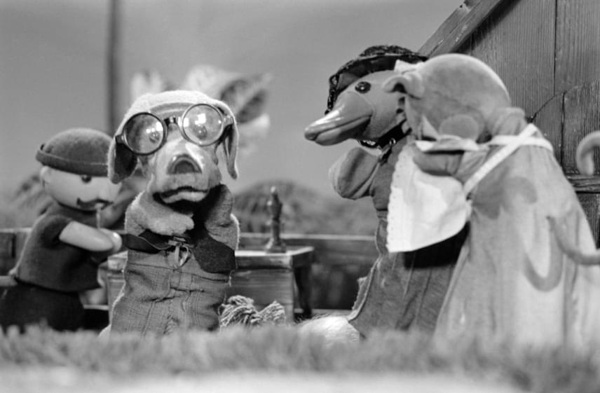 Ha valakire, hát a szemüveges, mindig morgó, mégis kedves Morzsa kutyára bizonyosan emlékszel a Futrinka utca című bábmesesorozatból.