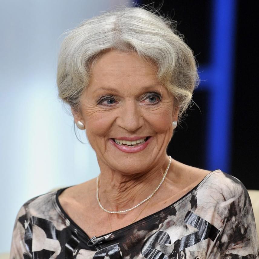 Hámori Ildikó Kossuth- és Jászai Mari-díjas színésznő ma ünnepli a kerek, 70. születésnapját.