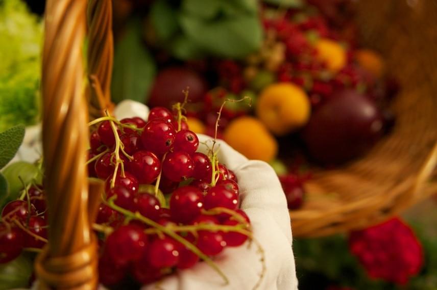 Aranyér esetén elsődleges fontosságú a magas rosttartalmú gyümölcsök fogyasztása: ide tartozik az alma, az ananász, a barack, emellett a citrusfélék vagy a bogyós gyümölcsök.