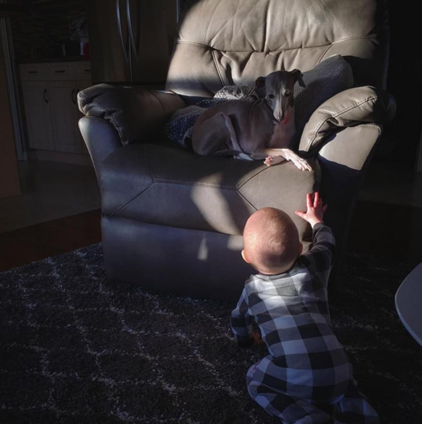 Nemcsak Weezy igényli a társaságot, hanem Evan is szeret az agár közelében lenni. A kisfiú és a kutya elválaszthatatlanok lettek.